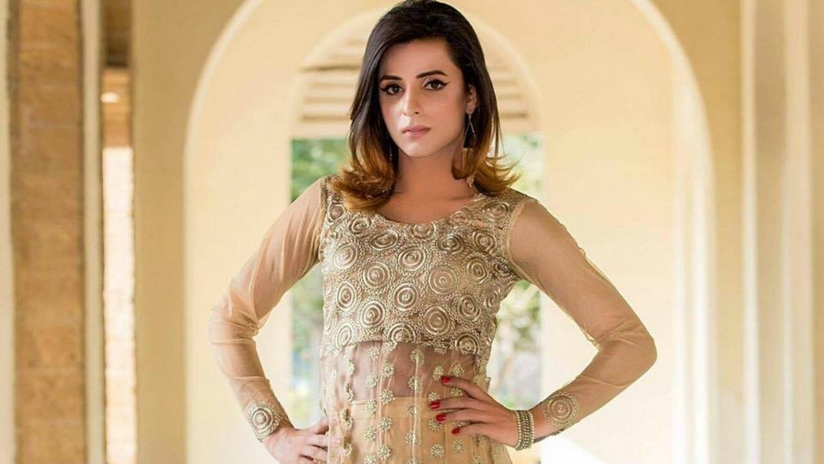 Transgender activist Kami sid wanted to reach people through modeling