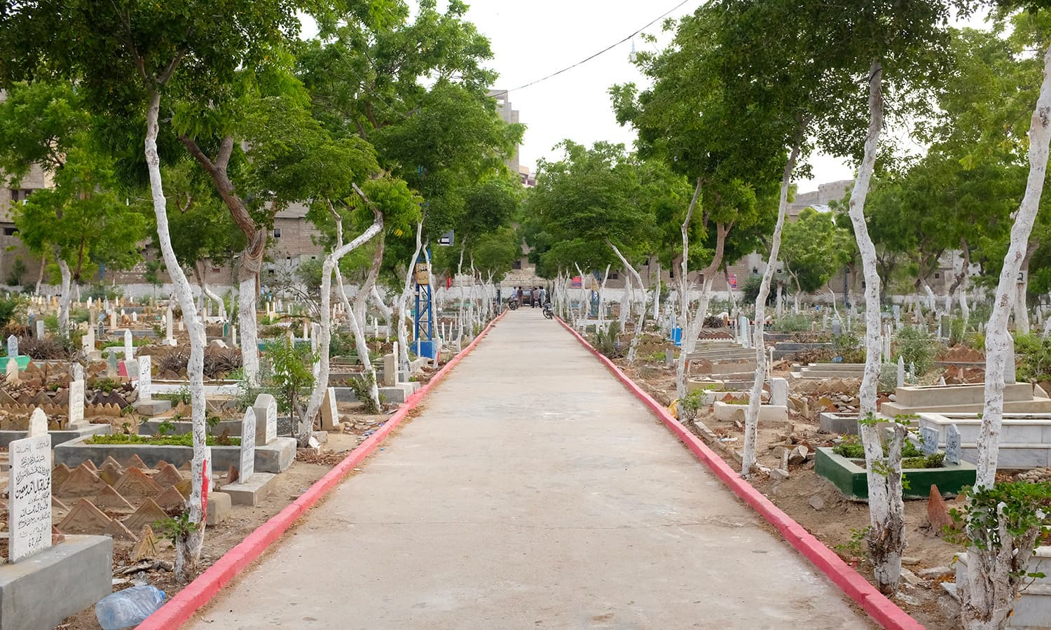 The graveyard is well maintained compared to other graveyards in the city.