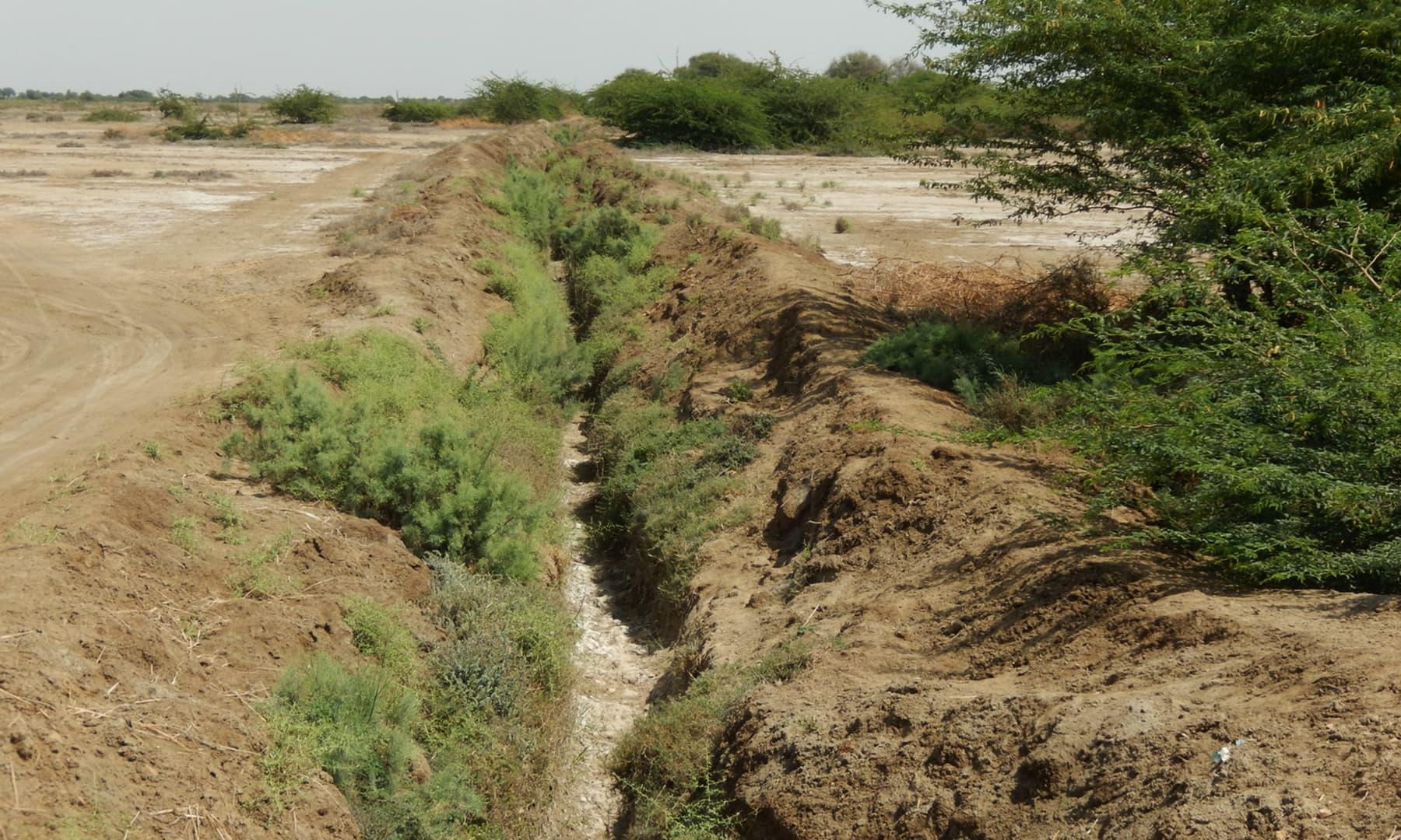 ایک سوکھی ہوئی نہر— تصویر ابوبکر شیخ