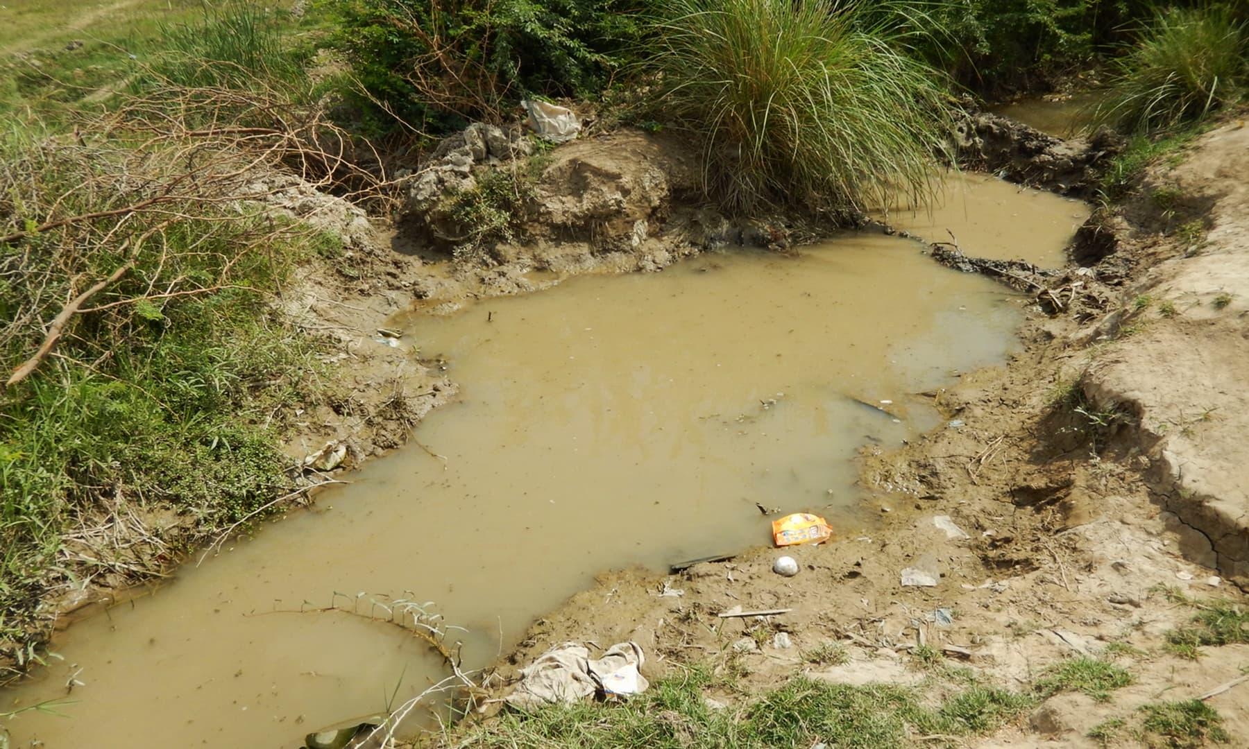 5 ماہ بعد نہر میں آنے والا پانی — تصویر ابوبکر شیخ