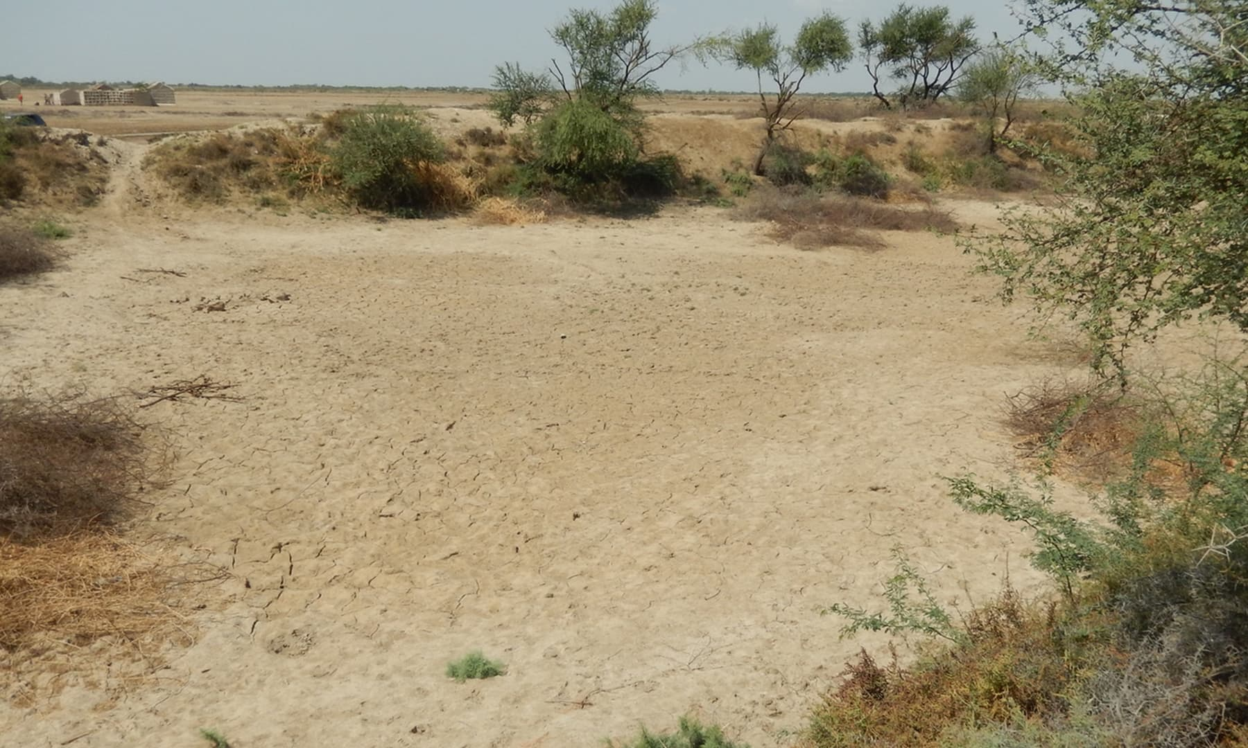 ایک گاؤں میں سوکھا تالاب— تصویر ابوبکر شیخ