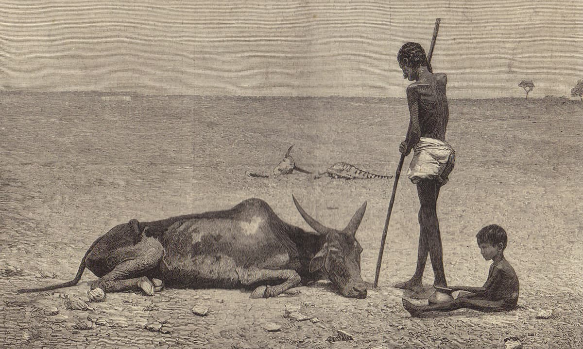 Engraving from *The Graphic*, October 1877, showing the plight of animals as well as humans in Bellary district, Madras Presidency, British India during the Great Famine of 1876–78