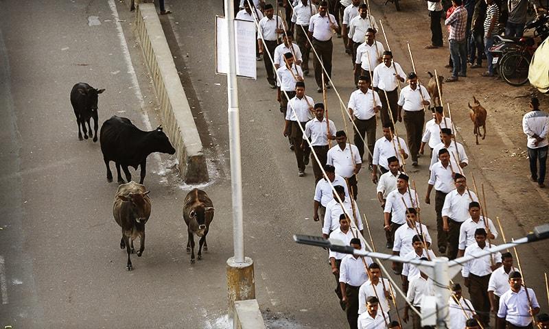 Crackdown creates meat shortage in Indian state Uttar Pradesh