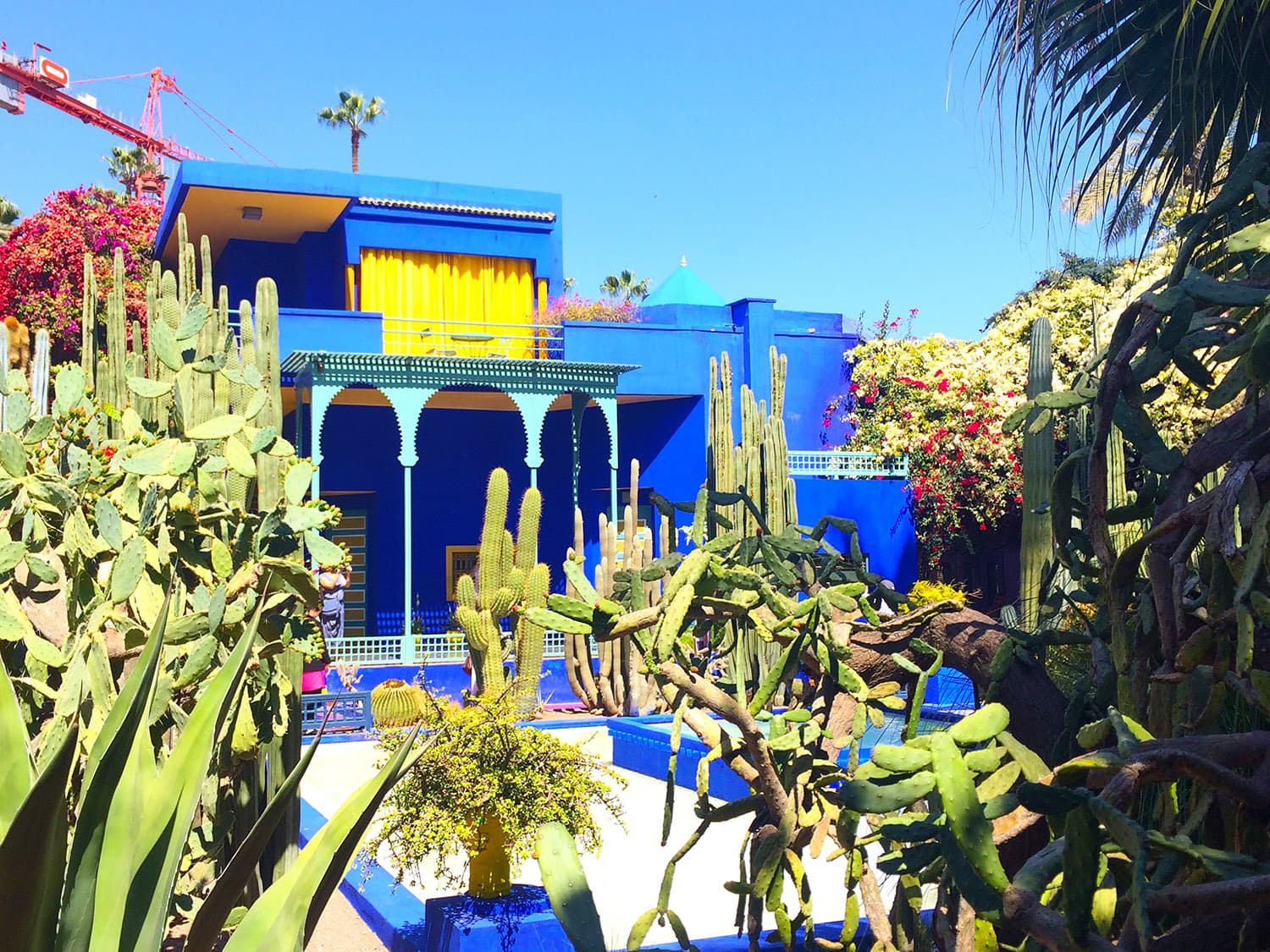 The striking blue shades were an interesting contrast in the Jardin Marjorelle.