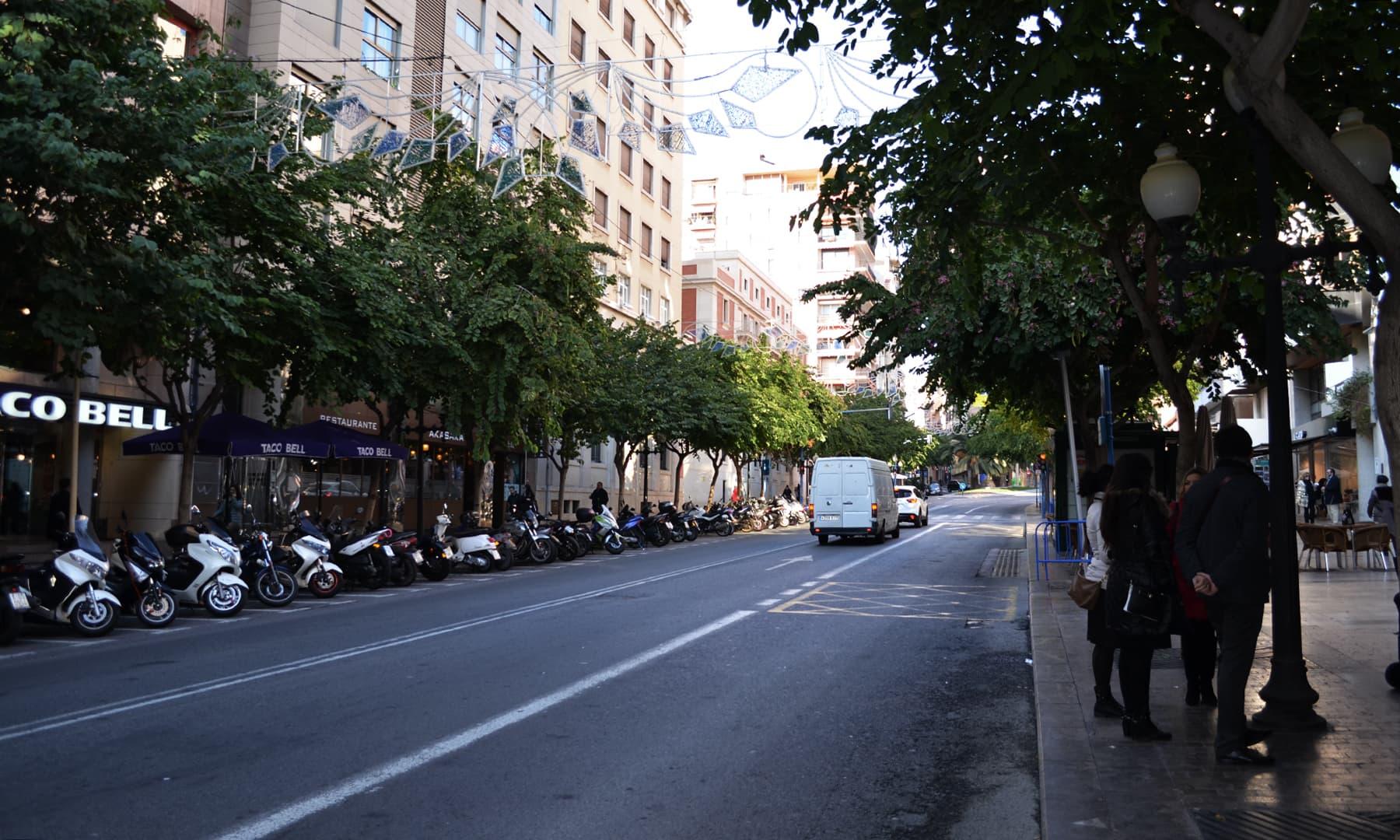 شہر میں جگہ جگہ سڑک کے دونوں جانب گھنے درخت لگے ہیں— تصویر رمضان رفیق