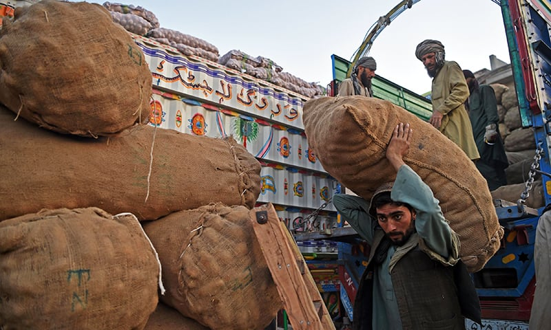 A labourer carries a sack of potatoes at a fruit and vegetable market in Peshawar. -AFP