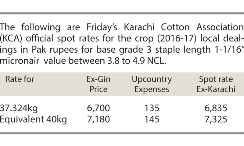 Slow trading on cotton market - Newspaper - DAWN COM