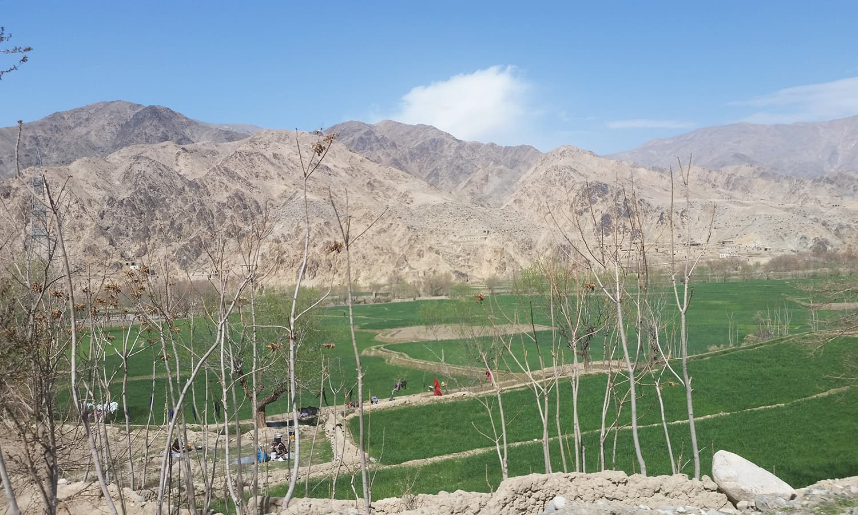 Escort girls in Mazar-e Sharif