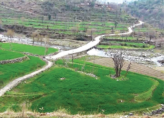 A view of the site of dam in Lower Dir. — Dawn