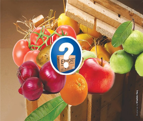 Crops and export potential of neglected fruits and veggies