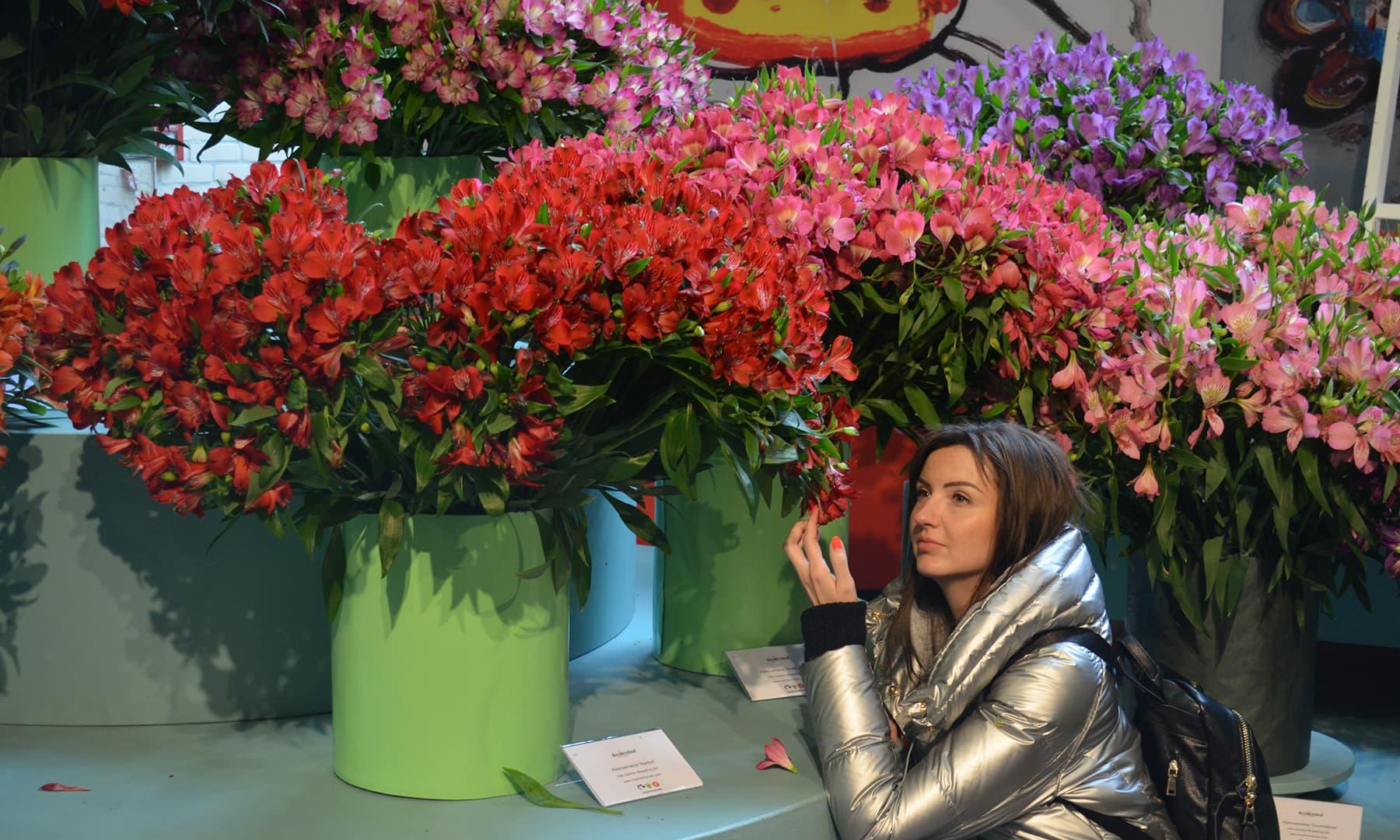 پھولوں سے باتیں — تصویر رمضان رفیق