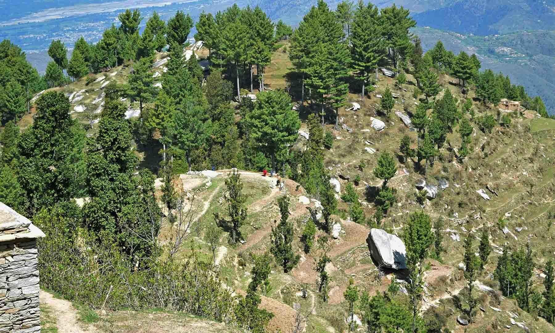 سرے شاہ سر چوٹی سے نظر آنے والا منظر— تصویر امجد علی سحاب