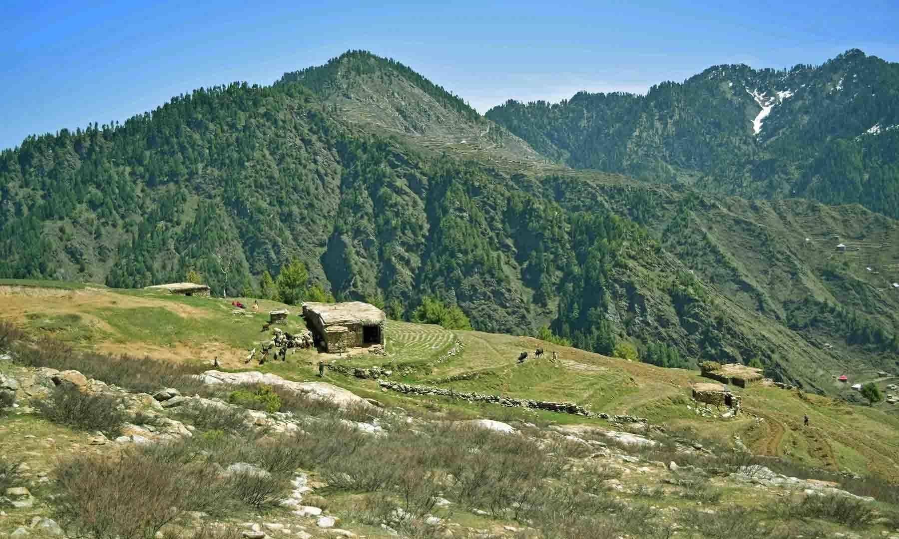 جھیل کی مشرقی طرف کا منظر— تصویر امجد علی سحاب