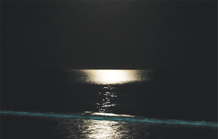 A moonlight Arabian Sea during moonrise