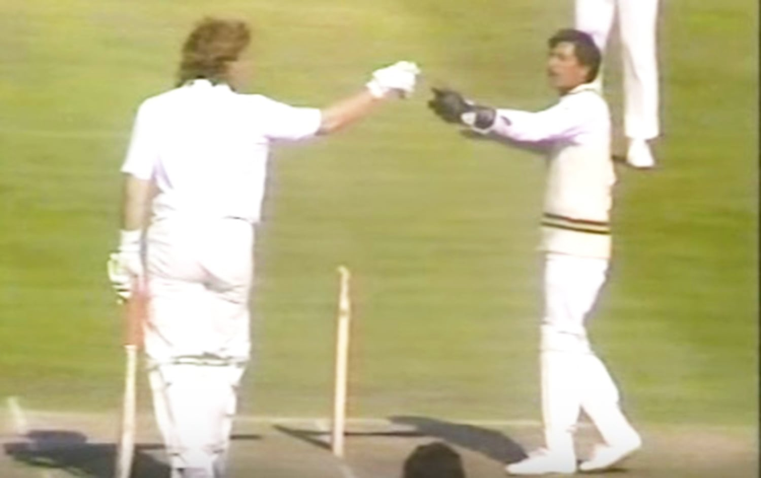 Saleem Yousuf gets into an altercation with England's Ian Botham in 1987. — Photo: Video grab.