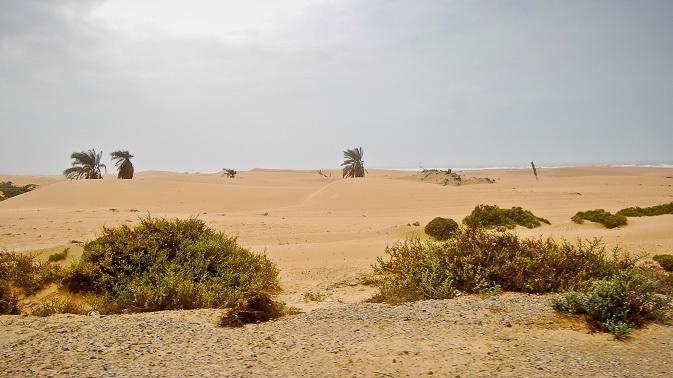 'Drought- like' situation hits Makran
