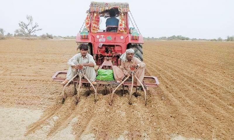 Impediments to farming make Tharis' joy short-lived