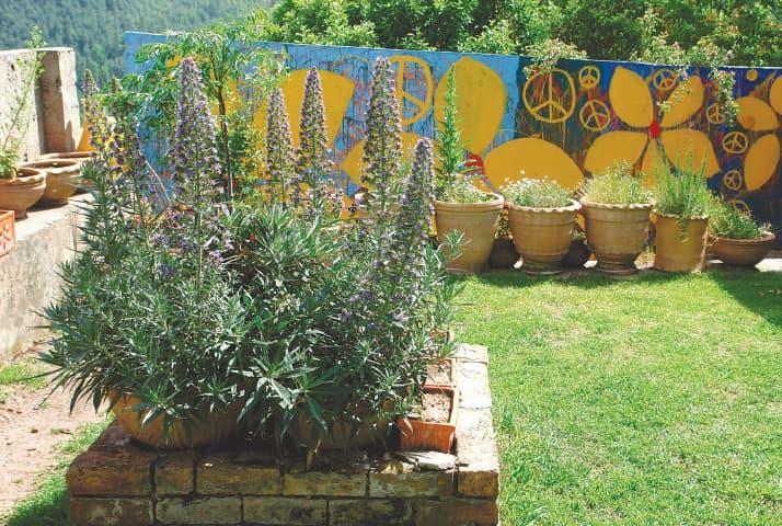Flower Pots Can Make A Garden Lively