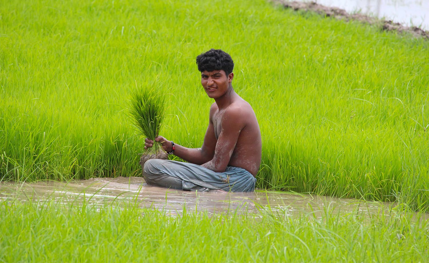 The men on the rice farms lead relatively simpler lives as compared to the women.