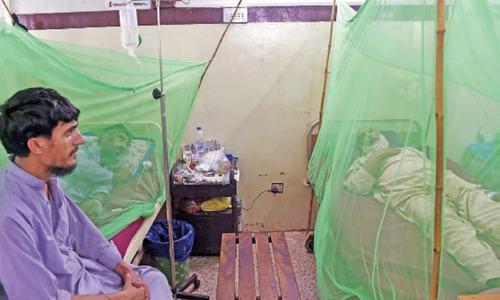 Punjab dengue experts leave for Peshawar
