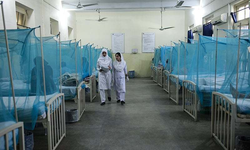 7 dead, over 1,500 affected by dengue in Peshawar: officials