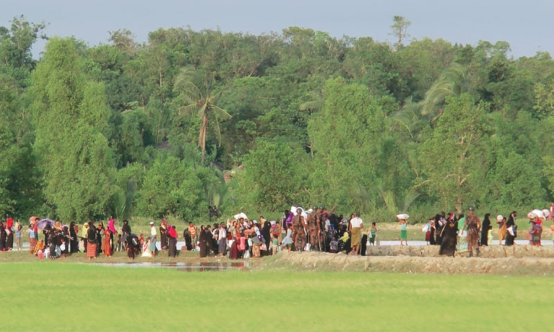 Rohingya militants accused of attacking Myanmar troops; 89 killed from both sides