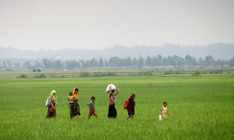 روہنگیا پناہ گزین میانمار سے بنگلہ دیش جانے کی کوشش کررہے ہیں — اے ایف پی فوٹو