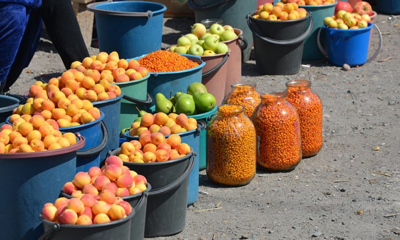 Apricots and sea buckthorn berries for sale at a market.─Prashant Ram via Flickr