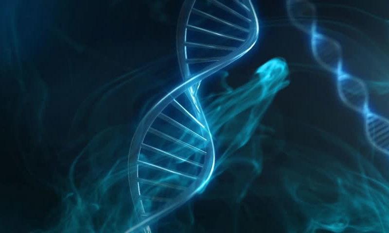 انسانی جسم میں ڈی این اے کی لمبائی کتنی؟