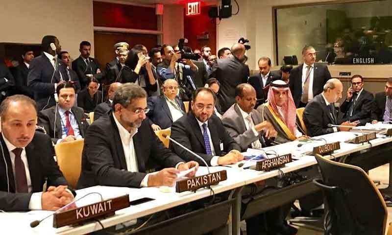 شاہد خاقان عباسی اسلامی تعاون تنظیم کے رابطہ گروپ کے اجلاس سے خطاب کرتے ہوئے—فوٹو: وزیراعظم ہاؤس