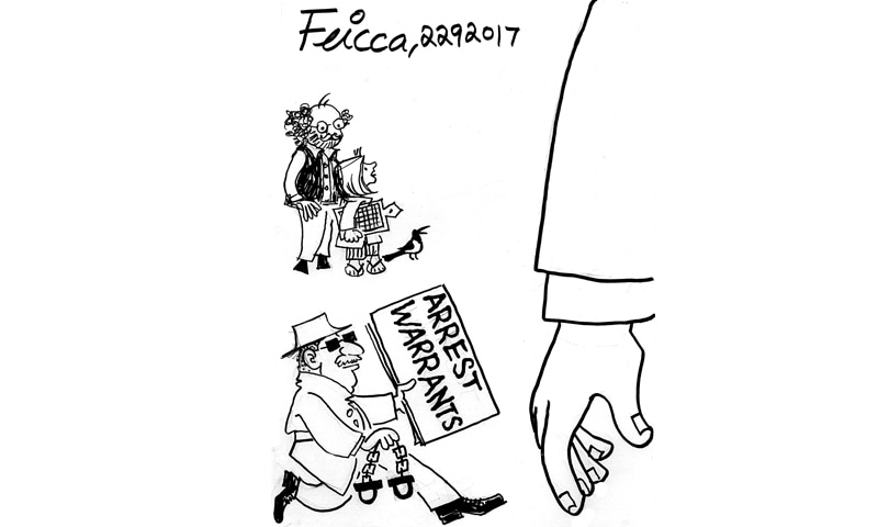 Feica's Cartoon