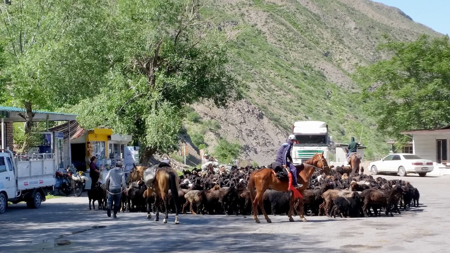 A 'traffic jam' in Kyrgyzstan.