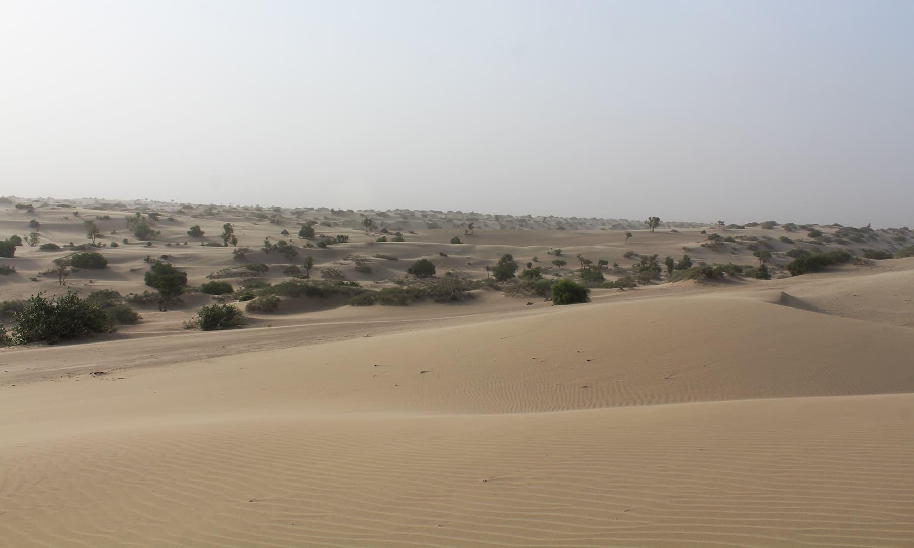 اچھڑو تھر کا صحرا —تصویر اختر حفیظ