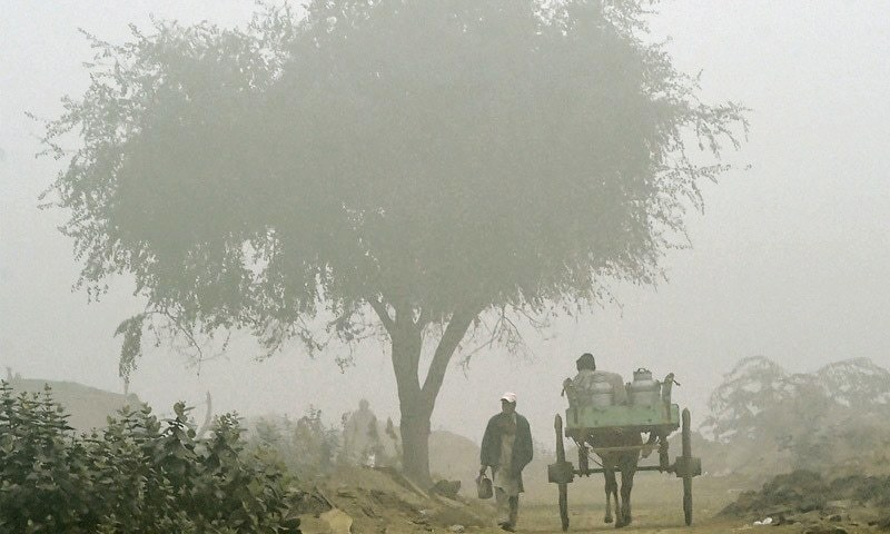 Is Punjab ready to tackle smog this year?