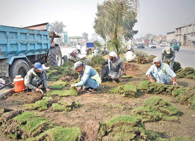 Labourers uprooting a greenbelt on GT Road for Peshawar Bus Rapid Transit project. Millions of rupees were spent on setting up the greenbelt two months ago. — Photo by Abdul Majeed Goraya