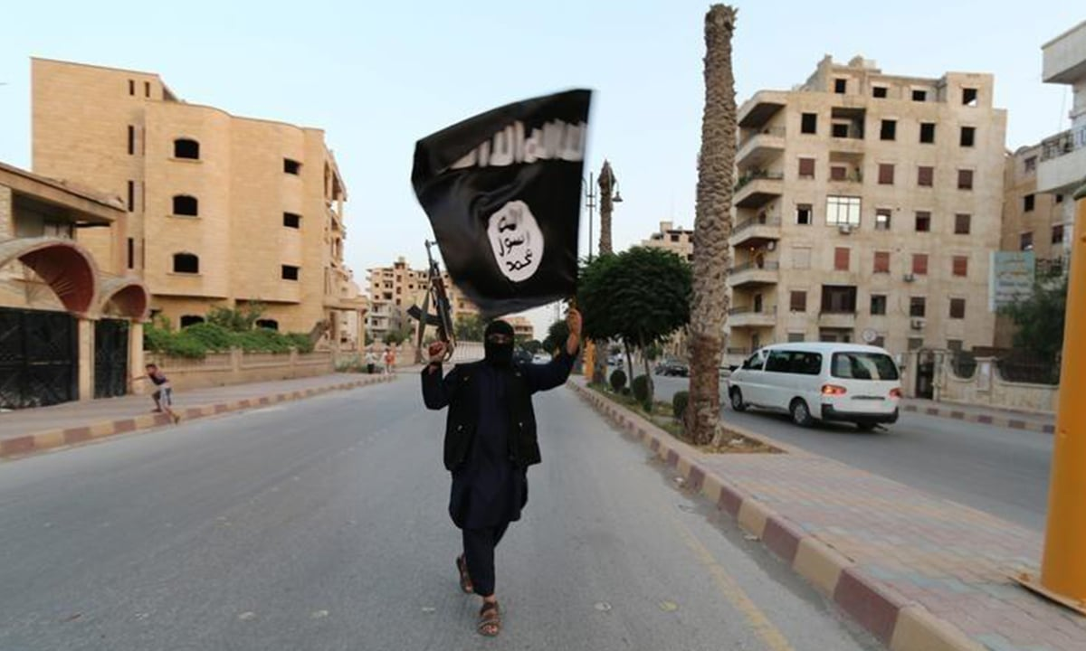 A member of the Islamic State of Iraq and the Levant (ISIL)  waves the terror organisation's flag | Reuters