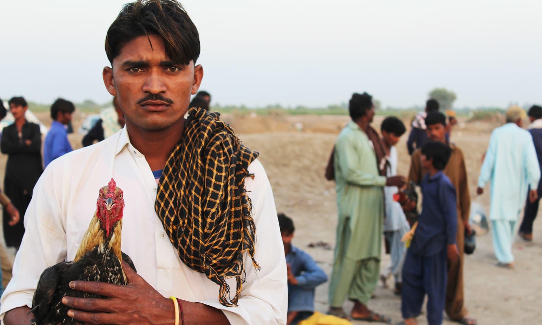 سمن سرکار سے عقیدت رکھنے والے اُن کی درگاہ پر نذرانے کے طور پر مرغ لاتے ہیں—تصویر اختر حفیظ