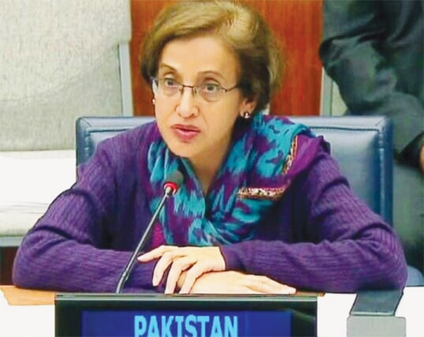 TEHMINA Janjua says Indian govt will gain undue influence in Afghanistan if it is allowed to play greater role in its economy.