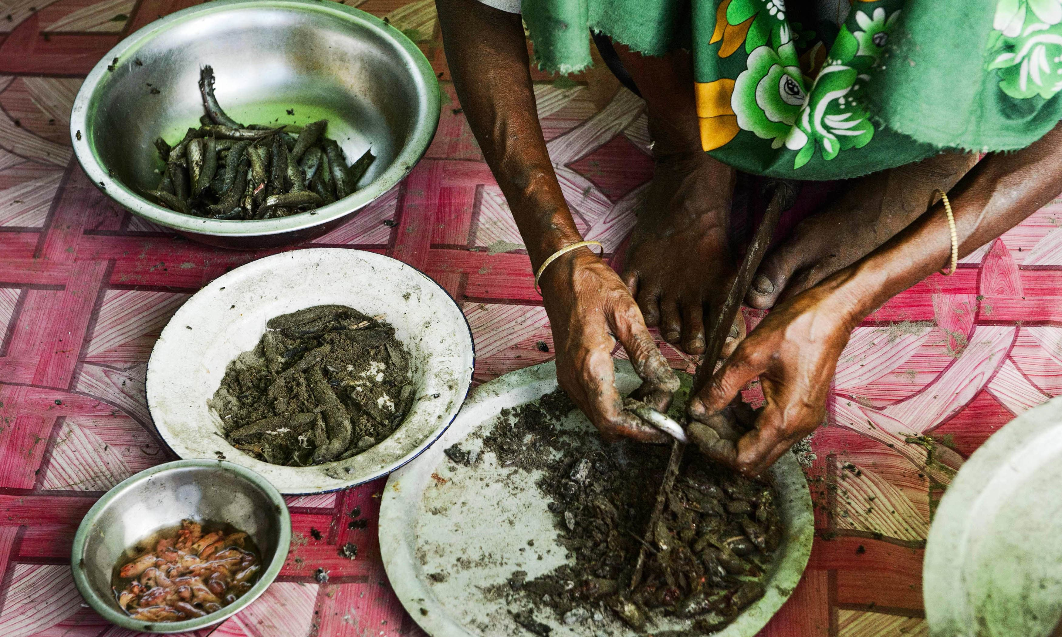 a woman cleans fish as she prepares a meal at a makeshift camp in Rakhine state in Myanmar while she and hundreds of other like her wait to cross over the border into Bangladesh. —AFP
