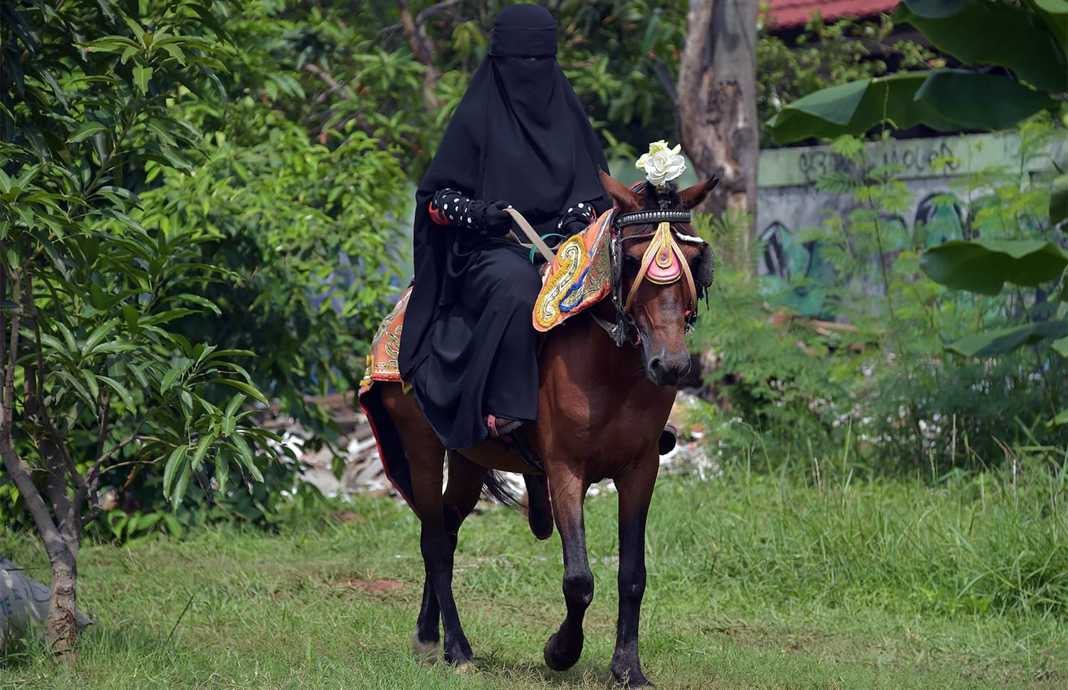 horse cave single muslim girls The latest tweets from i love naked girls (@gtmless5) rt just of the best pics.