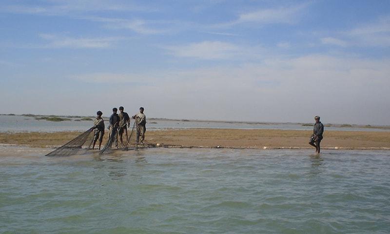 ہم اُن خوش نصیب اقوام میں سے ہیں جنہیں سمندر کی صورت قدرتی وسائل کا خزانہ حاصل ہے—تصویر پاکستان فشر فوک فورم