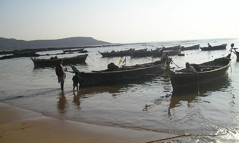 سمندر انسان کے ہمیشہ سے محسن رہے ہیں—تصویر پاکستان فشر فوک فورم