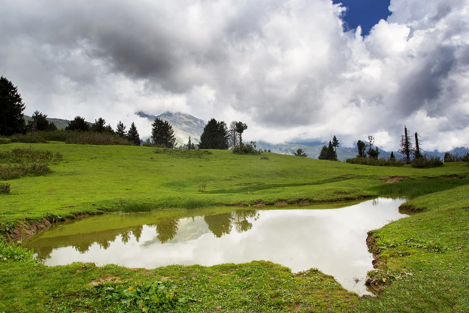 A view of the beautiful meadows of Kunaali.