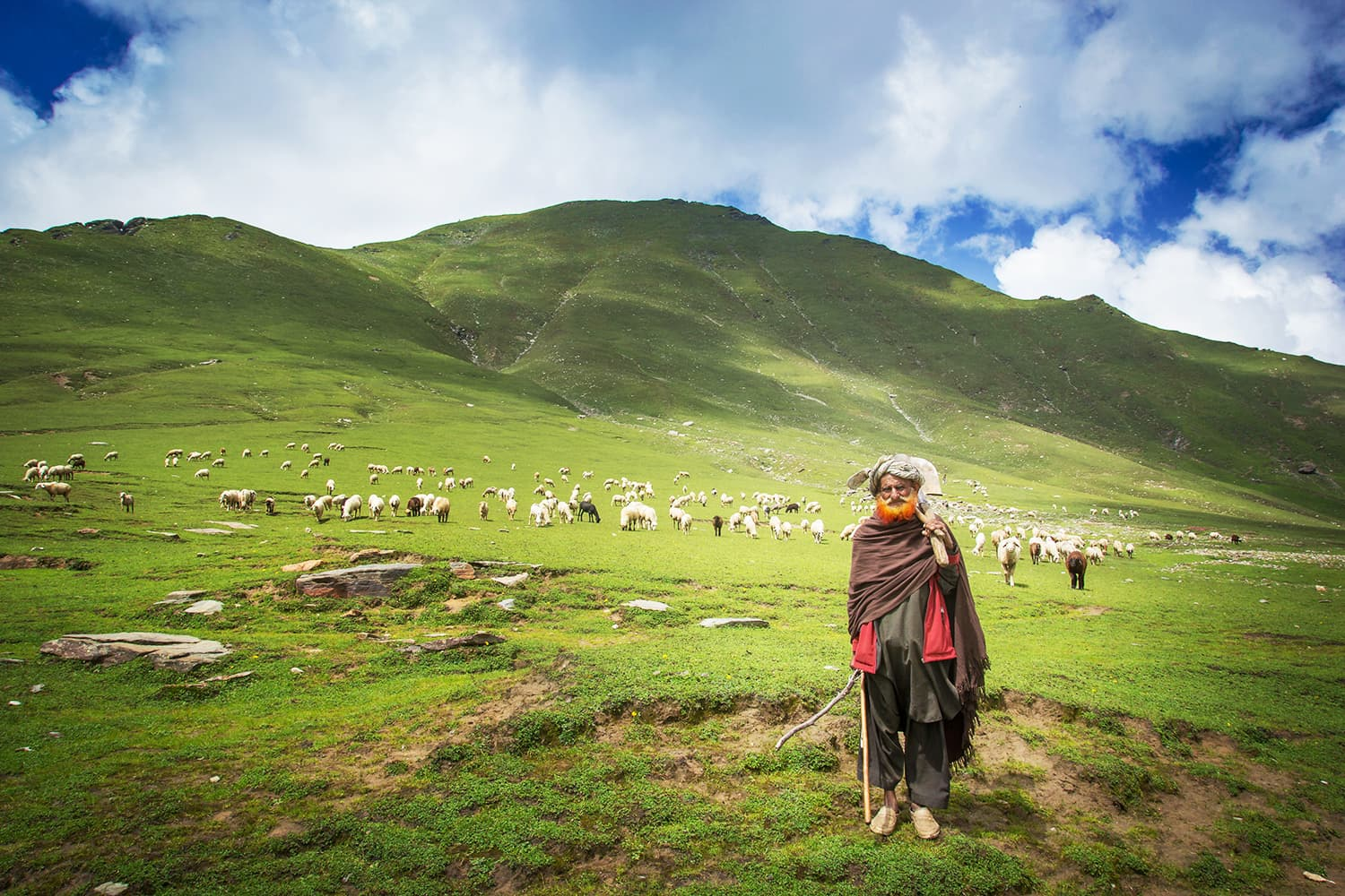 A friendly old man at Araam Gali with his flock of sheep.
