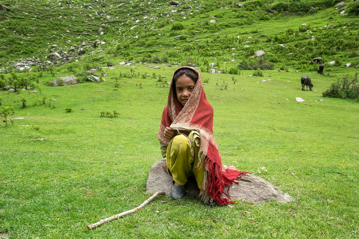 A shy little girl in Dhor who offered us tea.