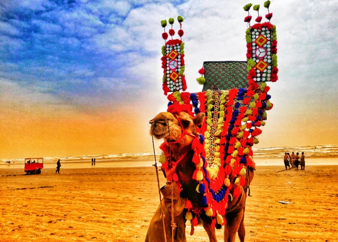 A camel owner shields himself from the sun under the shadow of the decorated animal on Seaview beach, in Karachi
