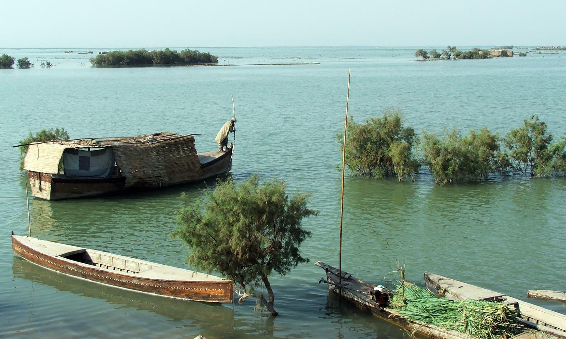 منچھر جھیل —فوٹو عبیداللہ کیہر