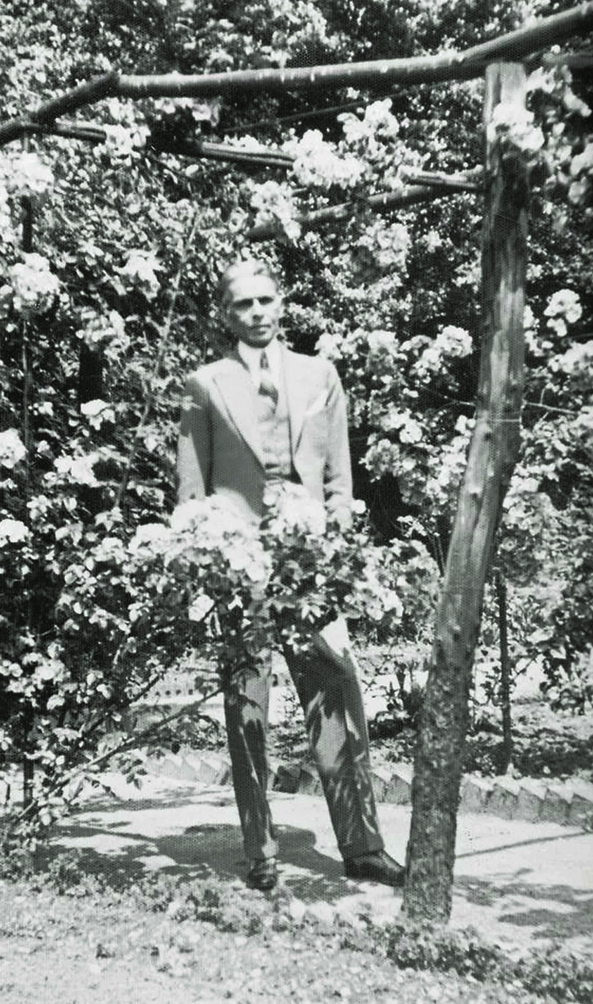 FLOWERS IN EXILE: Mr Jinnah on the grounds of his Hampstead home in the early 1930s. He moved to London with his daughter Dina and sister Miss Fatima Jinnah after the Second Round Table Conference ended in failure. During the four years of this self-imposed exile, Mr Jinnah had a thriving practice as a Privy Council lawyer. In 1934, he returned to India to assume the presidency of the All-India Muslim League.