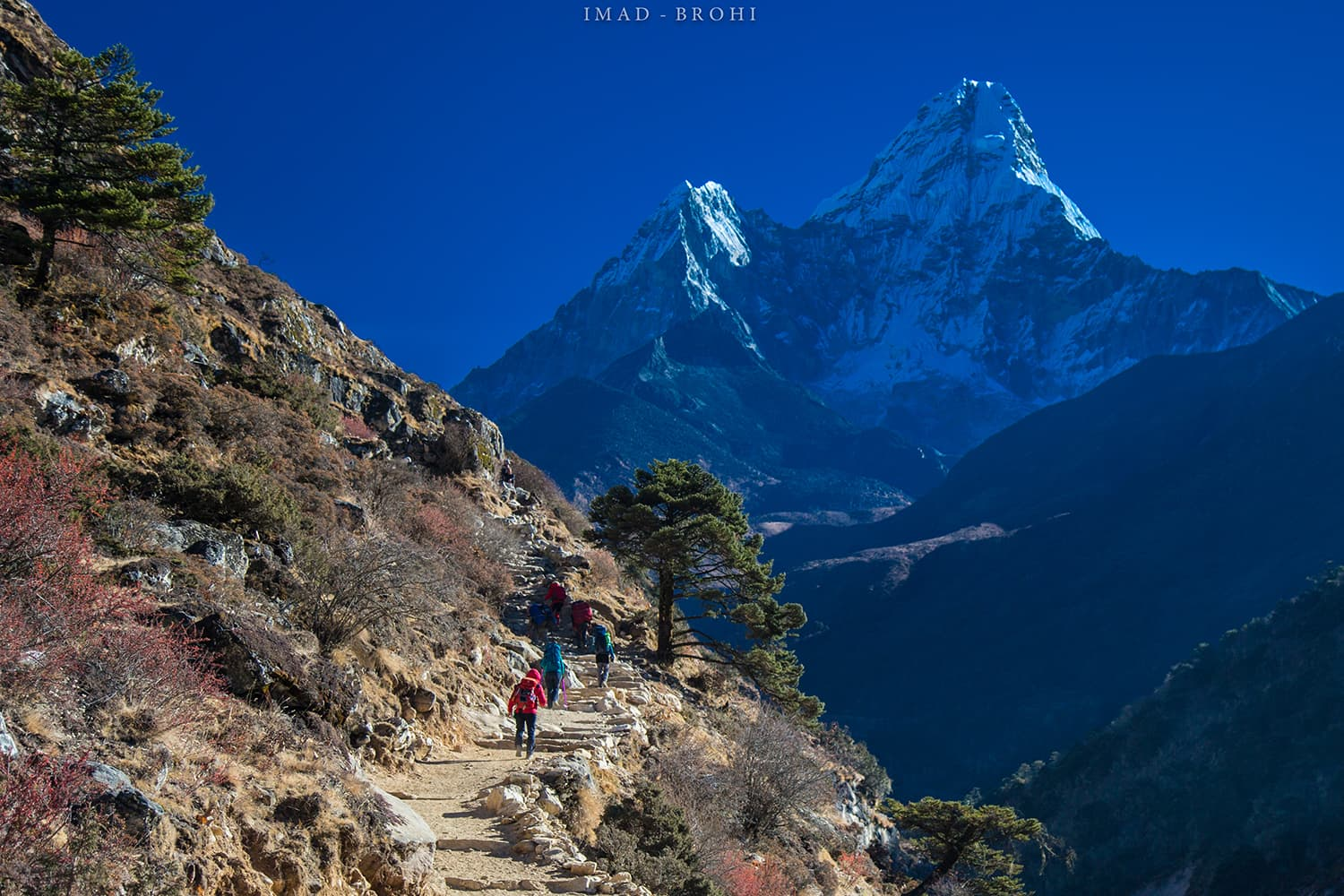 Day 6: Trail to Dingboche with Ama Dablam (6,812m) in the background.