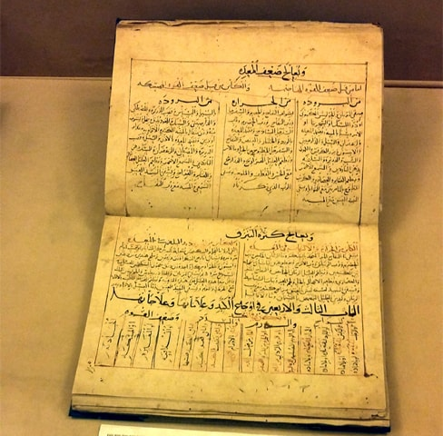 The treatise, Al Kannash Al Mushajjar Al Kabir, on diseases and their treatment written by Abu Zakariya Yahya Bin Mawiya dates back to 243 AH (857AD)